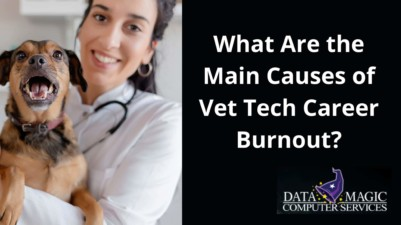 What Are the Main Causes of Vet Tech Career Burnout?